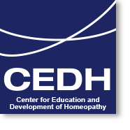 CEDH Education Portal